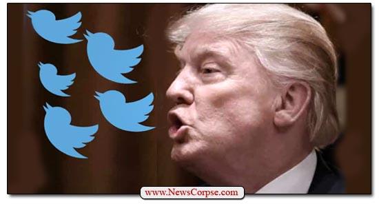 Donald Trump Twitter Birds