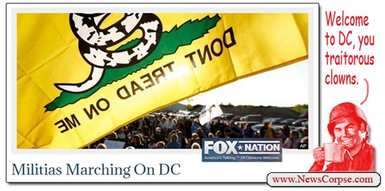 Fox Nation American Spring