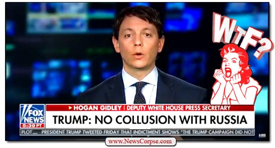 Fox News Gidley