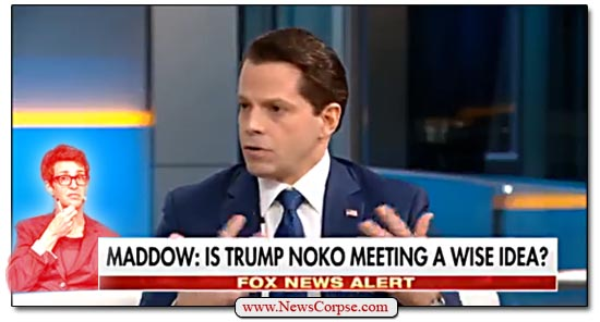Fox News Scaramucci