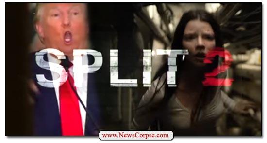 Trump Split 2