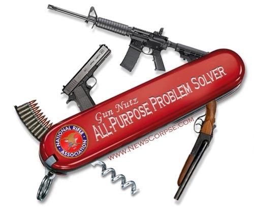 Gun Nutz Problem Solver