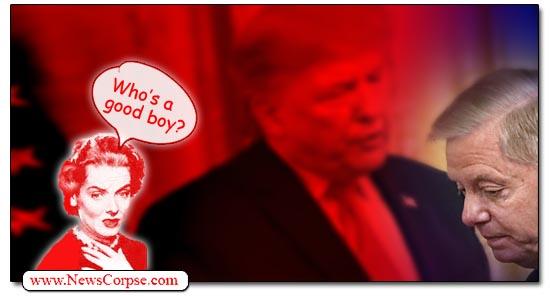 Lindsey Graham, Donald Trump