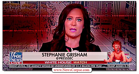 Stephanie Grisham, Fox News