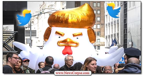 Donald Trump Chicken