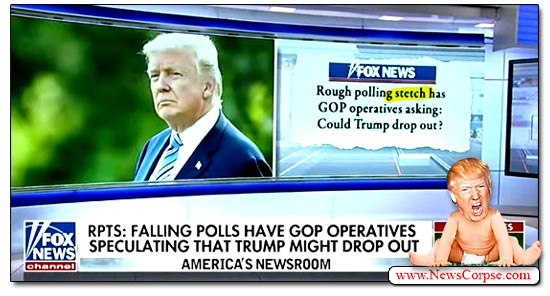 Donald Trump, Fox News, Polling