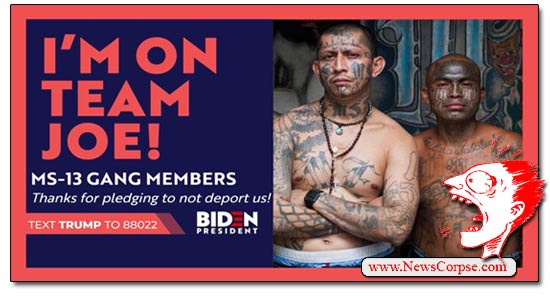 Donald Trump, MS-13 Ad, Team Joe